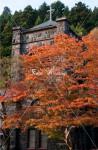 日光市 日光真光教会と紅葉