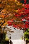 勾玉橋と紅葉