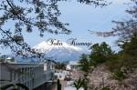 弘前市内と岩木山