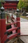 赤い橋と楼門