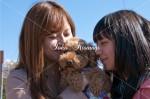 二人の愛犬2