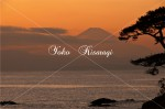 富士山と秋谷海岸1