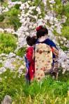 花の中の華