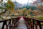 抱返り渓谷 神の石橋